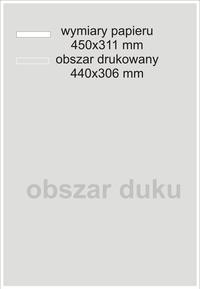 LEONARDO-plakaty 50 sztuk A3+
