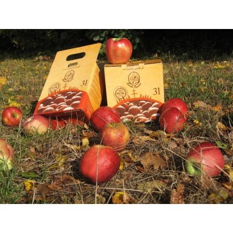 Sok jabłkowy z gruszką 3 l
